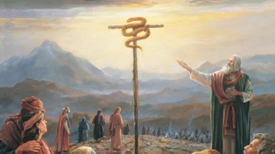 snake on a pole